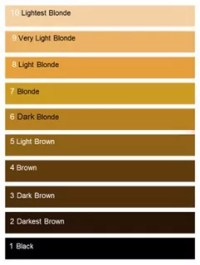Hair Color Levels and Hair Dye Codes Guide - All About The ...