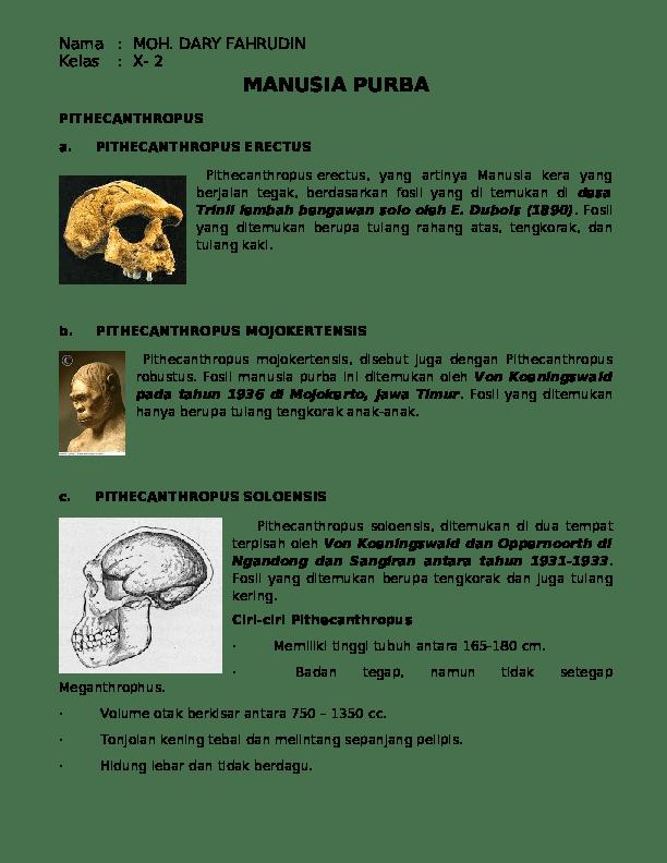 Ciri-ciri Pithecanthropus Erectus : ciri-ciri, pithecanthropus, erectus, PITHECANTHROPUS, Fajar, Ramadhan, Academia.edu