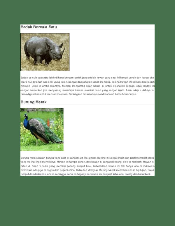 Badak Bercula Satu Berasal Dari : badak, bercula, berasal, Badak, Bercula, Rachmat, Assuhaimi, Academia.edu
