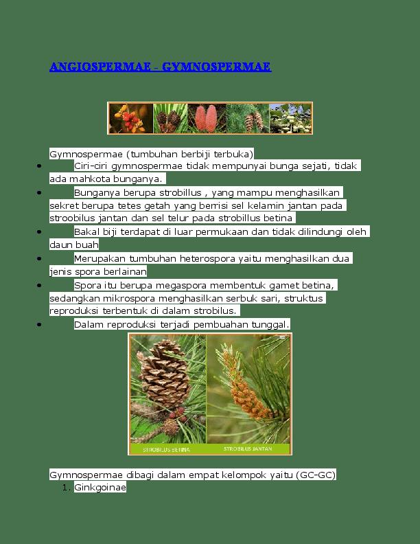 Tumbuhan Gymnospermae Dan Angiospermae : tumbuhan, gymnospermae, angiospermae, ANGIOSPERMAE, -GYMNOSPERMAE, Zu'amma, Academia.edu