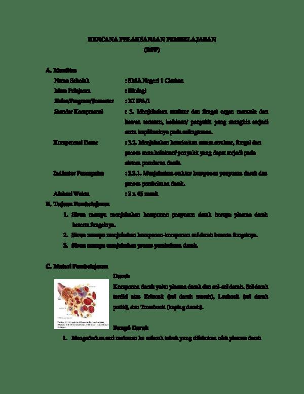 Jelaskan Fungsi Makanan : jelaskan, fungsi, makanan, Jelaskan, Fungsi, Jenis, Struktur, Komponen, Penyusun, Tubuh, Berbagai