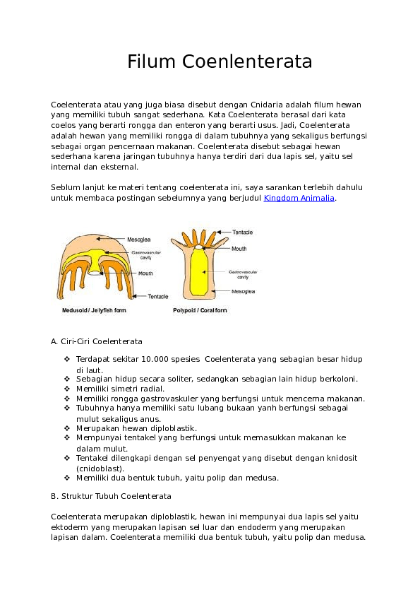 Struktur Tubuh Coelenterata : struktur, tubuh, coelenterata, Gambar, Polip, Hewan, Coelenterata, Gratis, Terbaru