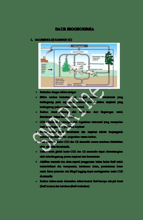 Daur Biogeokimia - Pengertian, Fungsi, Struktur dan Cir