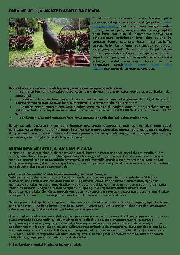 Cara Merawat dan Melatih Burung Jalak - UD. Jalak Suren