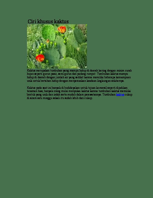 Ciri Khusus Kaktus : khusus, kaktus, Khusus, Kaktus, Memories, Academia.edu