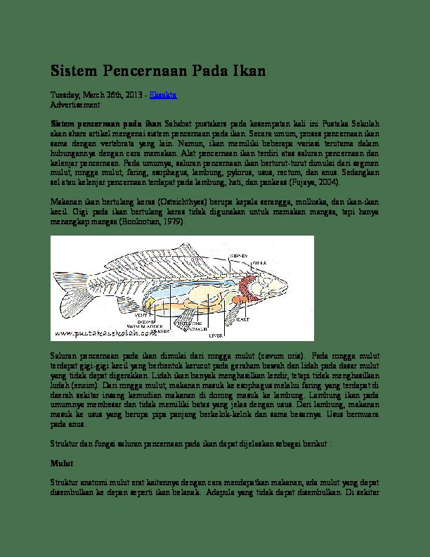 Fungsi Organ Tubuh Pada Ikan : fungsi, organ, tubuh, Gambar, Sistem, Pencernaan, Fungsinya