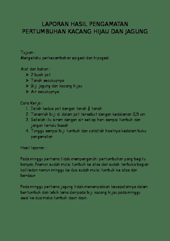 Laporan Kacang Hijau : laporan, kacang, hijau, Contoh, Laporan, Perkecambahan, Kacang, Hijau, Kumpulan
