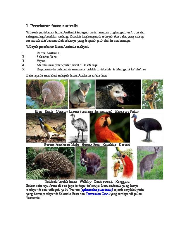 Flora Dan Fauna Tipe Australis : flora, fauna, australis, Persebaran, Fauna, Australis, William, Clark, Academia.edu