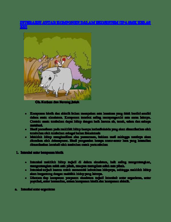 Contoh Kompetisi Dalam Ekosistem : contoh, kompetisi, dalam, ekosistem, Contoh, Kompetisi, Dalam, Ekosistem, Aneka, Macam