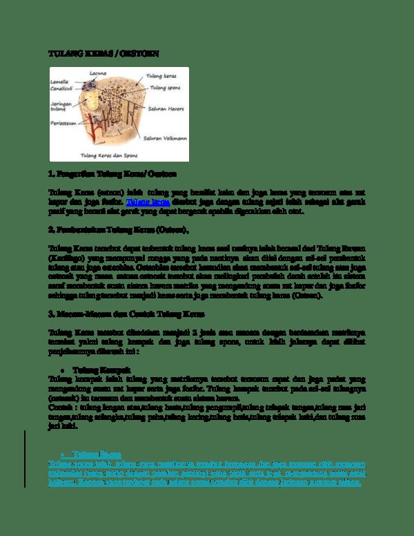 Proses Perubahan Tulang Rawan Menjadi Tulang Keras : proses, perubahan, tulang, rawan, menjadi, keras, Proses, Perubahan, Tulang, Rawan, Menjadi, Keras, Disebut, Sebutkan