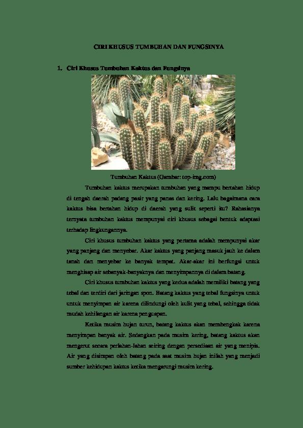 Ciri Khusus Kaktus : khusus, kaktus, KHUSUS, TUMBUHAN, FUNGSINYA.docx, Satria, Academia.edu
