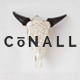 Download Conall - A Clean & Beautiful Multipurpose Theme from ThemeForest