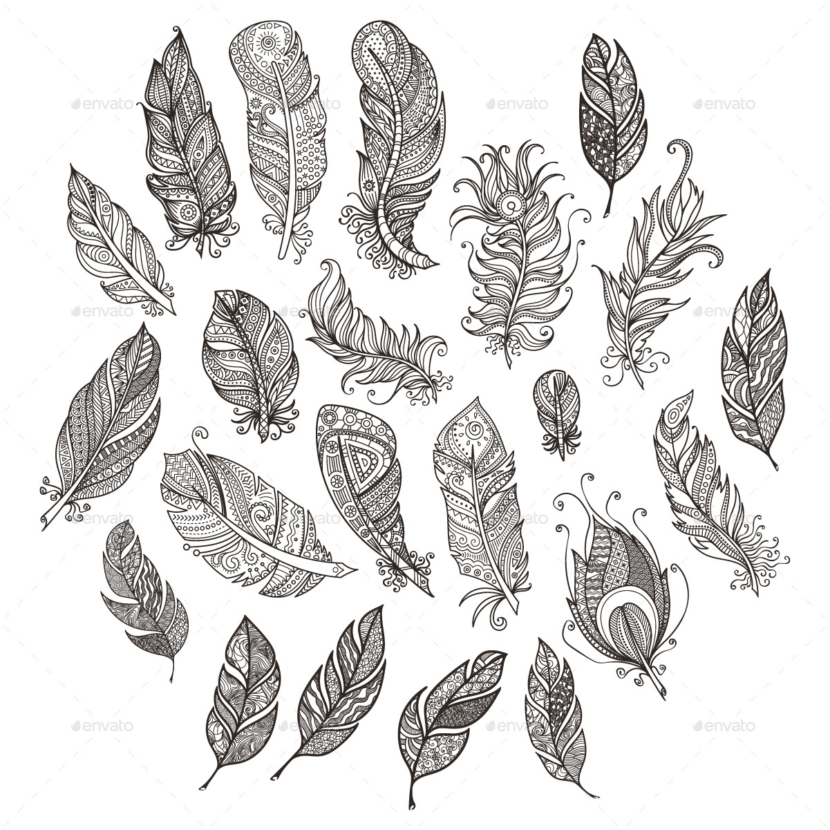 Vector Ornate Set of Stylized and Abstract Feathers