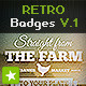 Download 12 Retro Badges / Vintage Labels V.1 from GraphicRiver