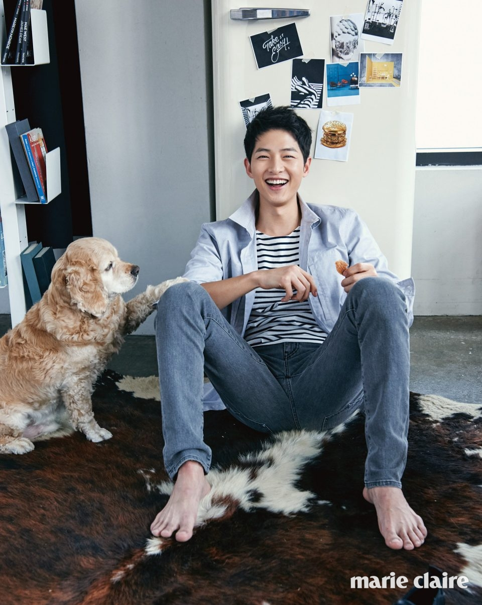 Wallpaper Song Joong Ki Cute Song Joong Ki Plus A Cute Dog What More Can You Want