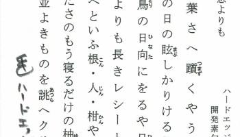 開発素句報 2019-12
