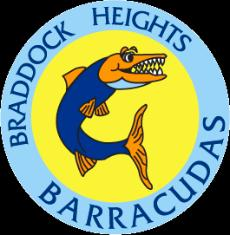 Barracuda Team logo