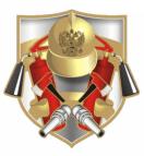 добровольная пожарная дружина