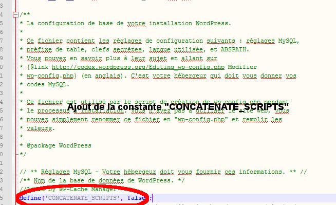 Ajouter CONCATENATE_SCRIPTS dans wp-config.php