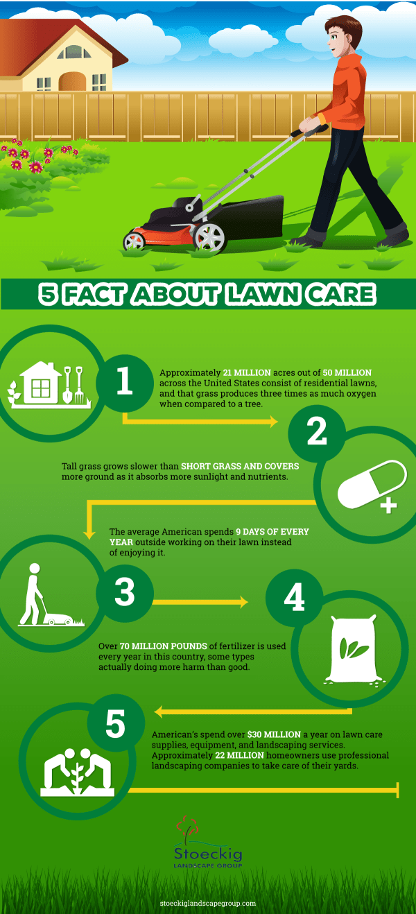 5 fact lawn care