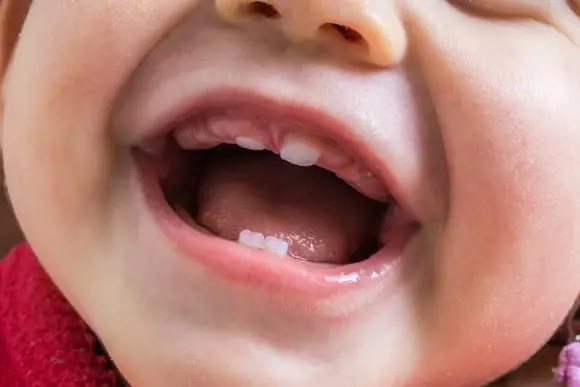 Primeiros Dentes do Bebê Nascendo