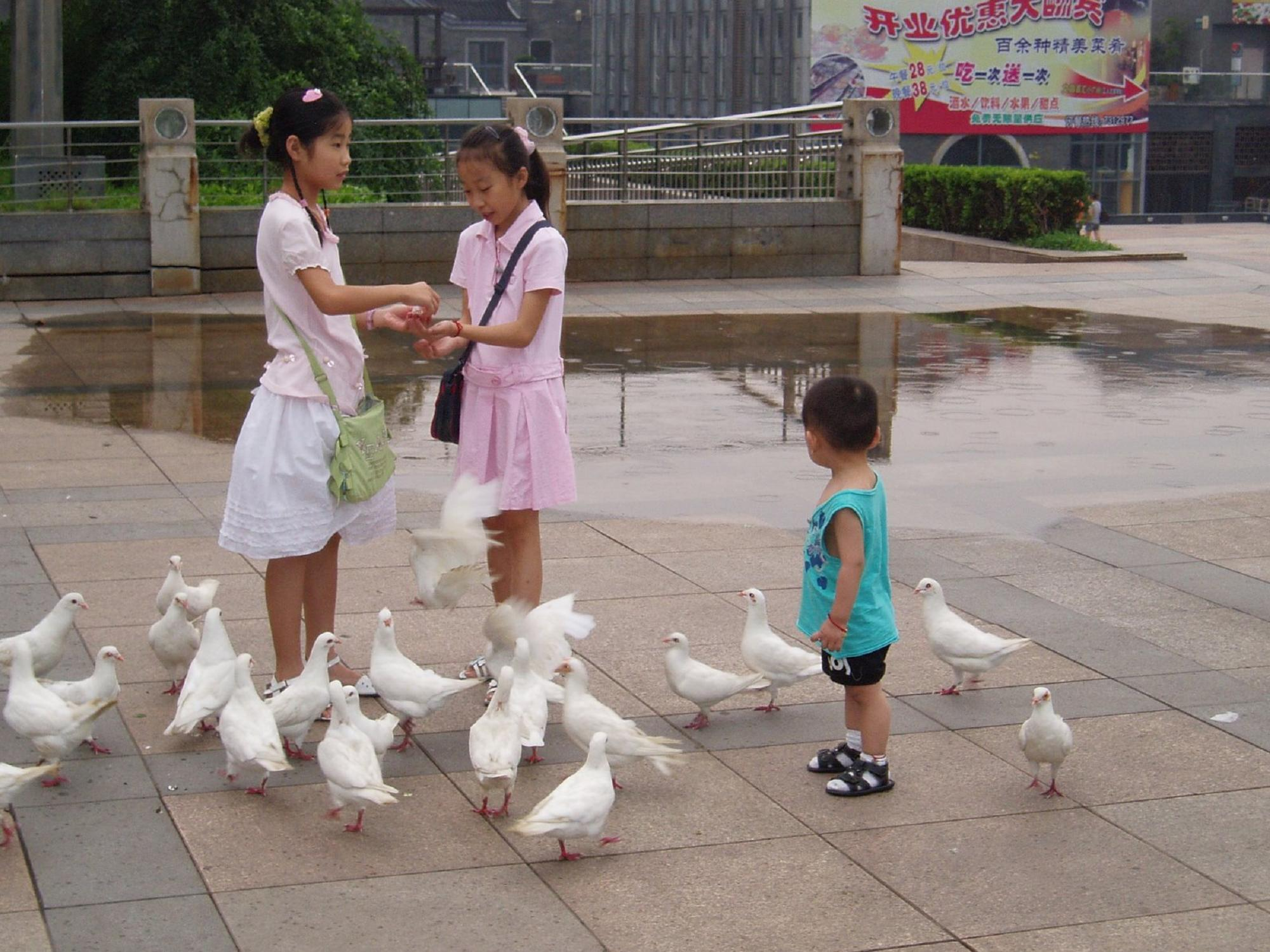 Children from sichuan province will holiday in the russian far east children from sichuan province will holiday in the russian far east voices from russia publicscrutiny Image collections