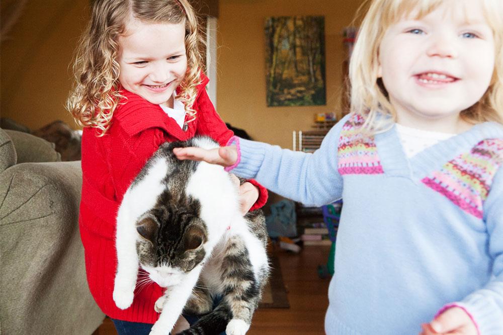 Parent-Exercises-Pet-Abuse-Management