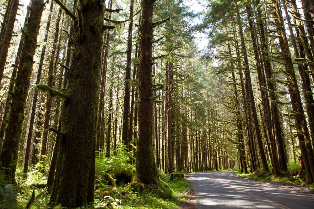 late-season hikes in the Northwest