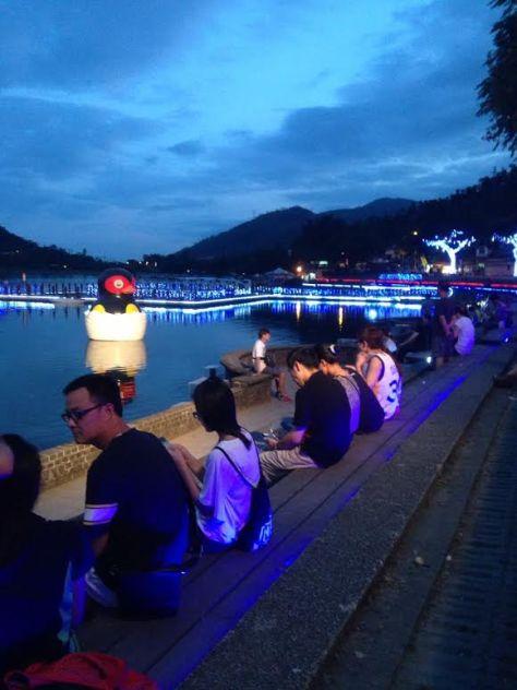 鯉魚不夜城2