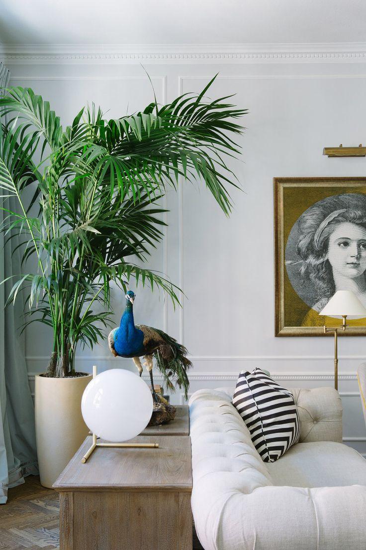 Grote plant in de woonkamer  Styleguide