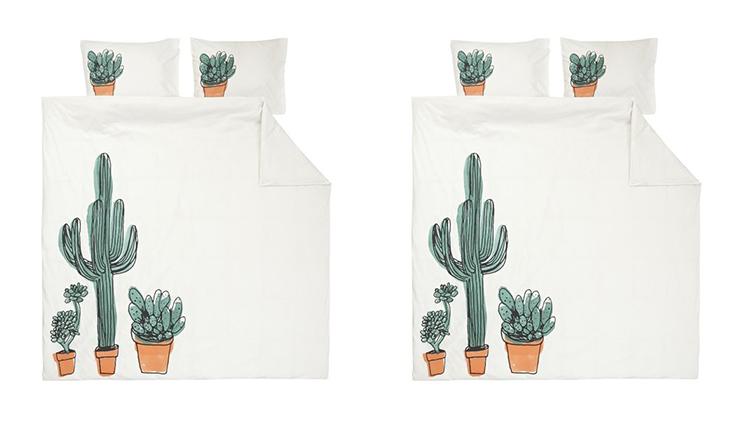 Slapen tussen de cactussen Minder prikkelig dan je denkt