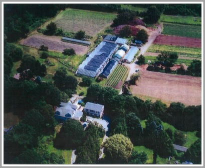 An aerial view of Belta's Farm from several years ago shows fields, greenhouses, a compost pile (near the top), and two homes (bottom).