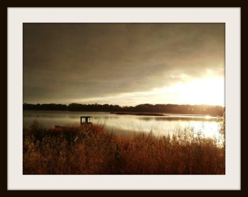 Mill Pond - Ellen van Dorsten