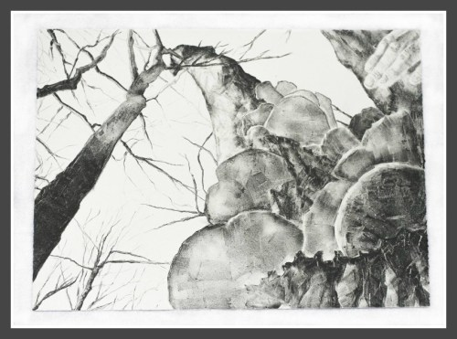 """Peak,"" lithograph on paper by Alexandra Mahoney."