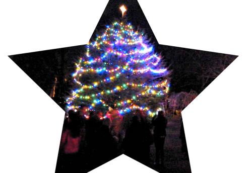 The Wakeman Town Farm Christmas tree.