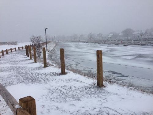 The Ned Dimes Marina at Compo Beach seems surprisingly calm, just before high tide. (Photo/Steve Axthelm)