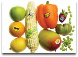 A sample of GMO foods.