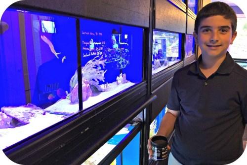 Sam Goldblat, volunteering at Westport Aquarium.
