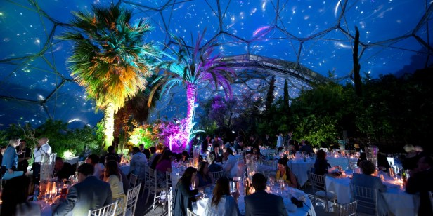 mediterranean-biome-wedding-night