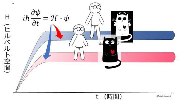 多世界解釈でのシュレディンガーの猫