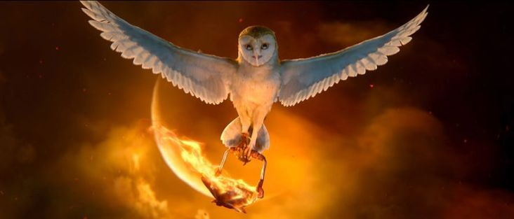 "Soren, voiced by JIM STURGESS in Warner Bros. Pictures' and Village Roadshow Pictures' family fantasy adventure ""LEGEND OF THE GUARDIANS: THE OWLS OF GA'HOOLE"", a Warner Bros. Pictures release. Photo courtesy of Warner Bros. Pictures"