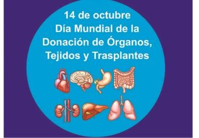 Día Mundial de la Donación de Órganos, Tejidos y Trasplantes