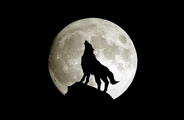 睡不著覺。又是月亮惹的禍? | 科學人 | 果殼網 科技有意思
