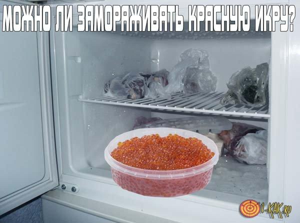 冷蔵庫内の貯蔵のための赤キャビアを凍結することは可能ですか