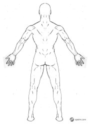 male drawing anatomy reference sketch template front side moda clothes cute