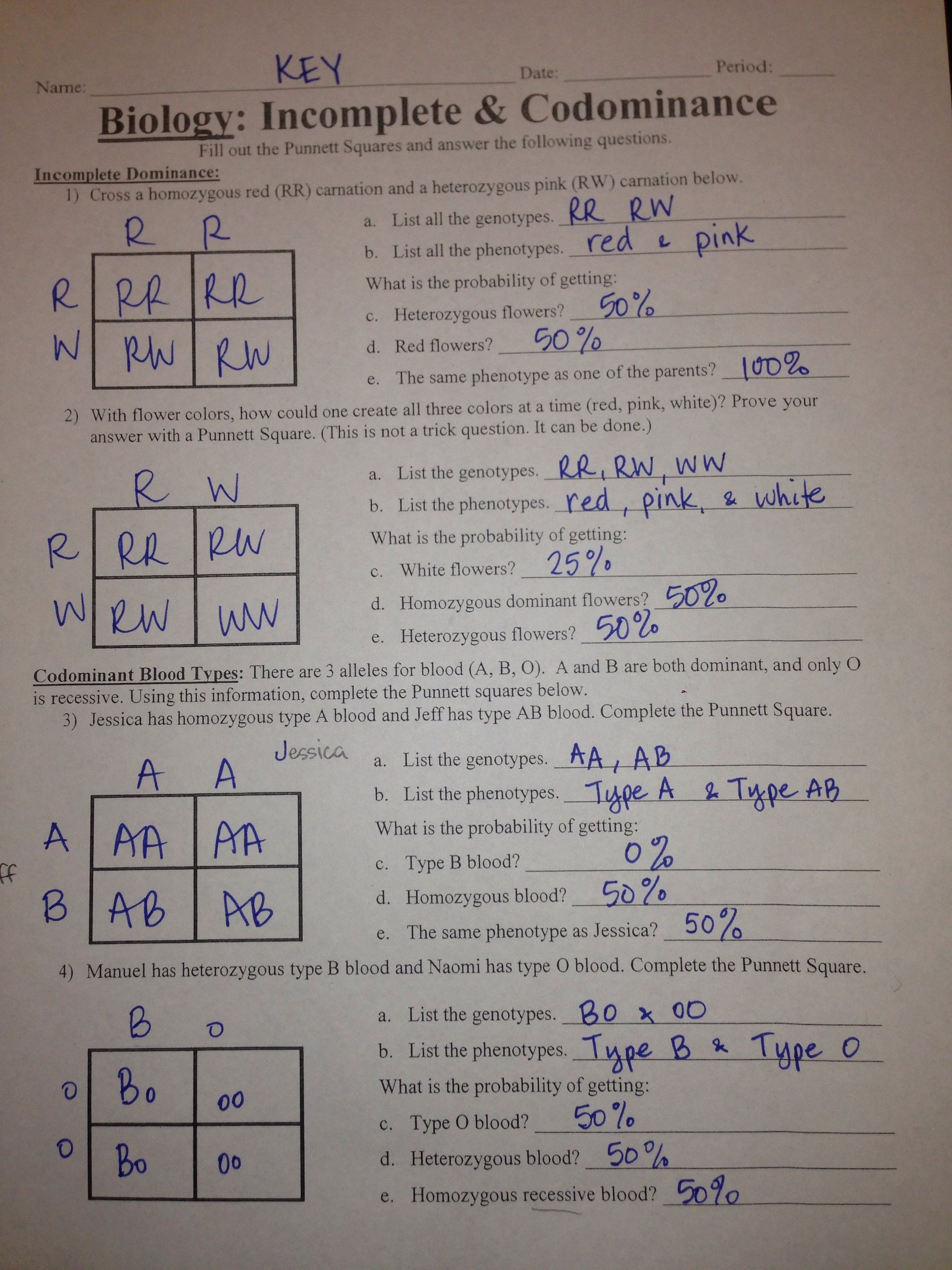 worksheet. Punnett Square Practice Worksheet With Answers