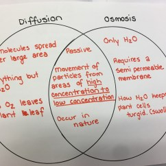 Passive And Active Transport Venn Diagram Volvo Wiring Diagrams Xc70 Of Osmosis Diffusion Thevillas Co