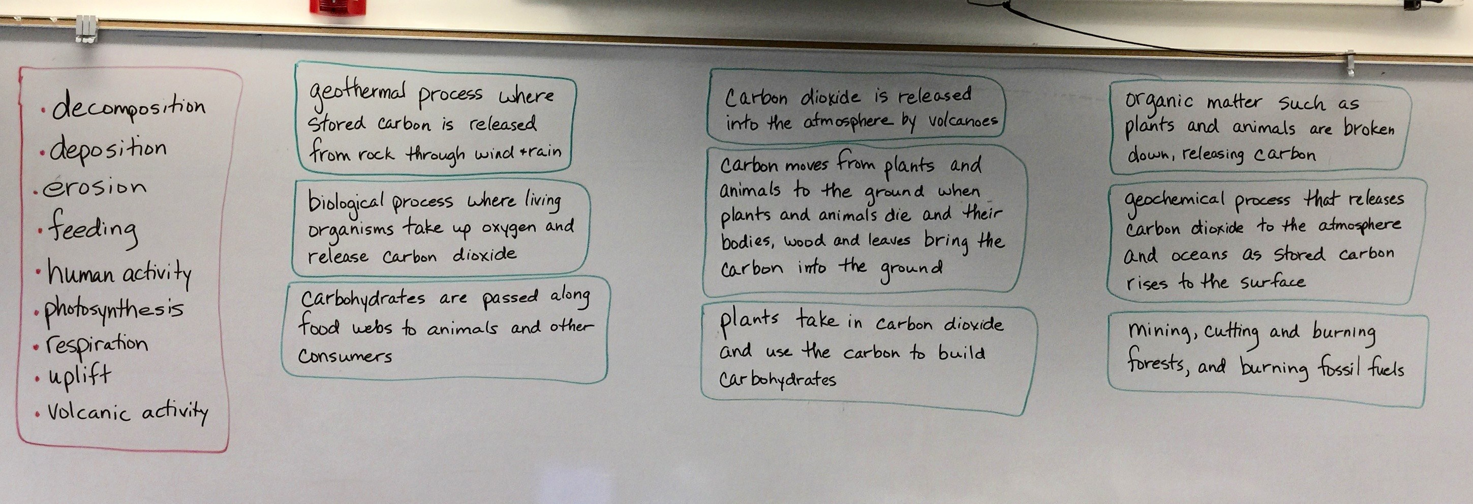 Water Carbon And Nitrogen Cycle Worksheet Color Sheet