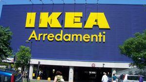 Ikea Selezioni Online Inviati Già 12500 Curriculum Per