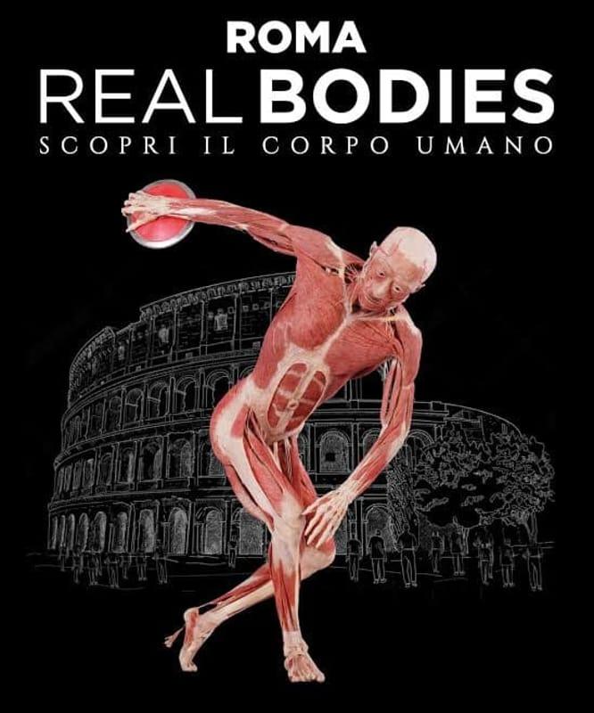Risultati immagini per real bodies mostra roma